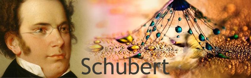 Bladmuziek Franz Schubert